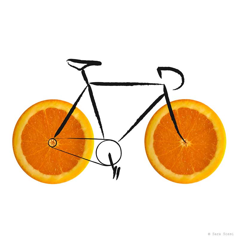 Fruits - bicycle