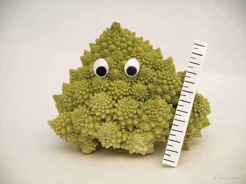 Vegetables - broccoli
